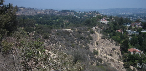 Fire Griffith Park_Blog_1360.jpg