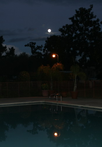 pool-moon-blog_4578.jpg