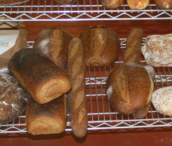 bread-loaves-blog_1493